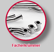 Fcherkrmmer